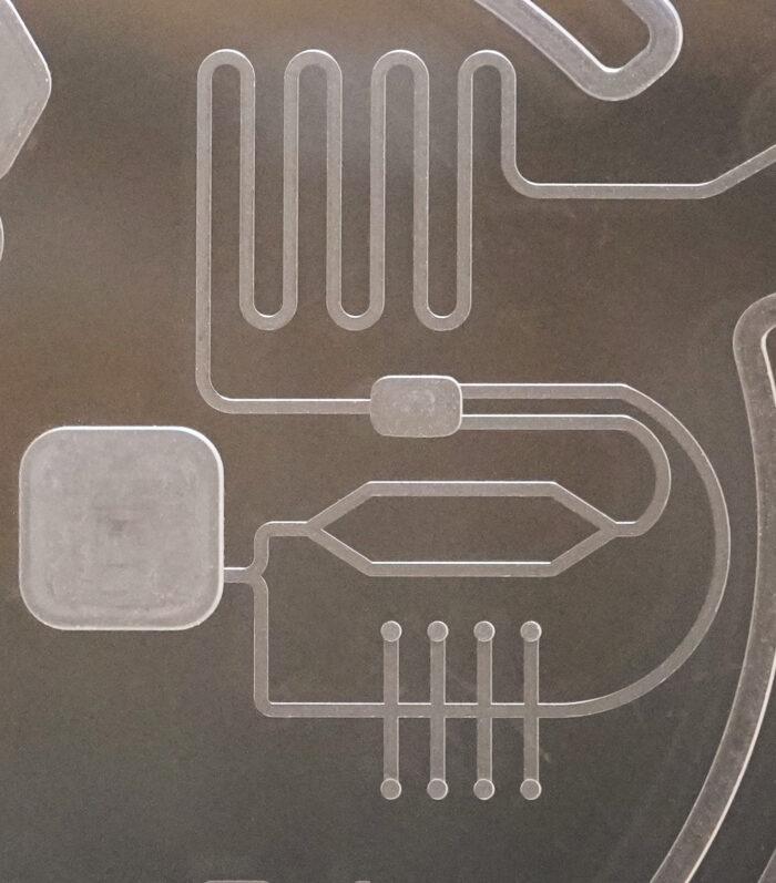 Mikrofluidik aus Glas, Lab on a chip aus Glas